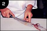 イカ活き造りの作り方 手順2